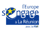 Logo l'europe s'engage réunion